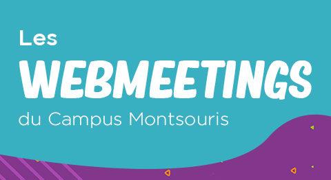 Webmeeting sur les métiers de l'informatique : mardi 13 avril à 18h